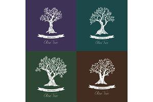 Greek oil olive trees set for olive grove