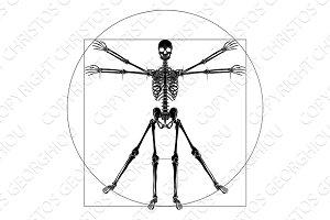 Da Vinci Vitruvian Man Skeleton