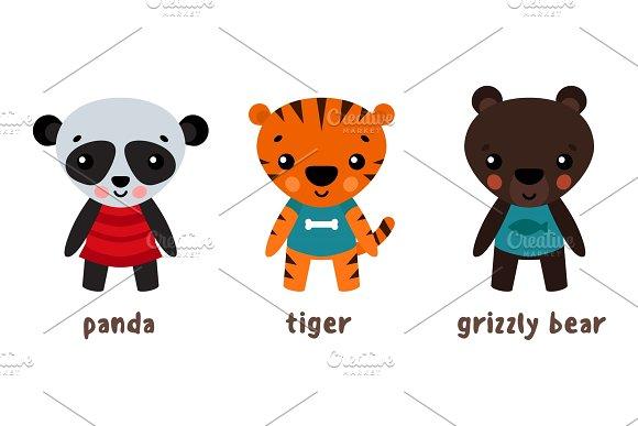 Panda Or Koala Grizzly Bear And Tiger Animals
