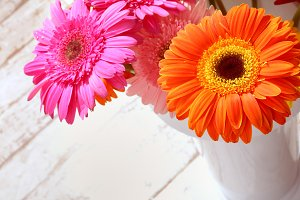 Flower gerbera bouquet