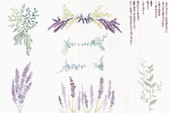 Lavender Farm Graphic Set - Clip Art in Illustrations - product preview 4