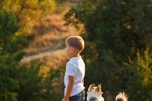 Little boy with dog. Walk at sunset
