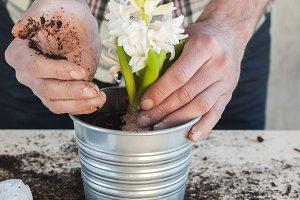 Man taking soil to fill a flowerpot