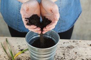 Woman taking soil to fill a pot