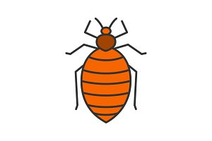 Bed bug color icon