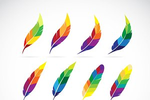 Vector group of feathers design.