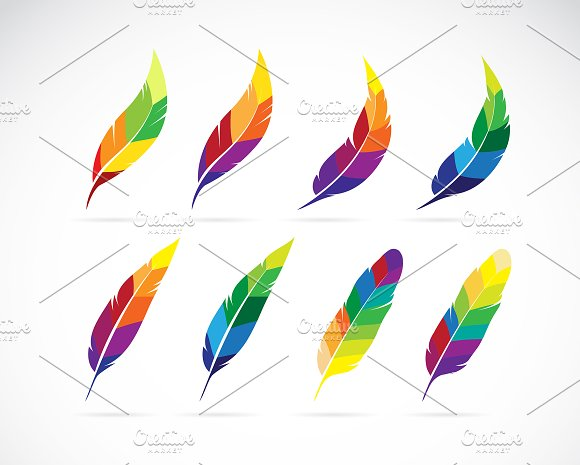 Vector Group Of Feathers Design