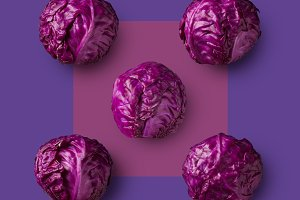 Red cabbage isolated on purple background
