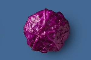 Red cabbage isolated on a blue background