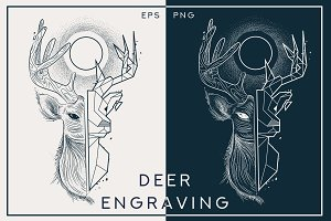 portrait of deer engraving