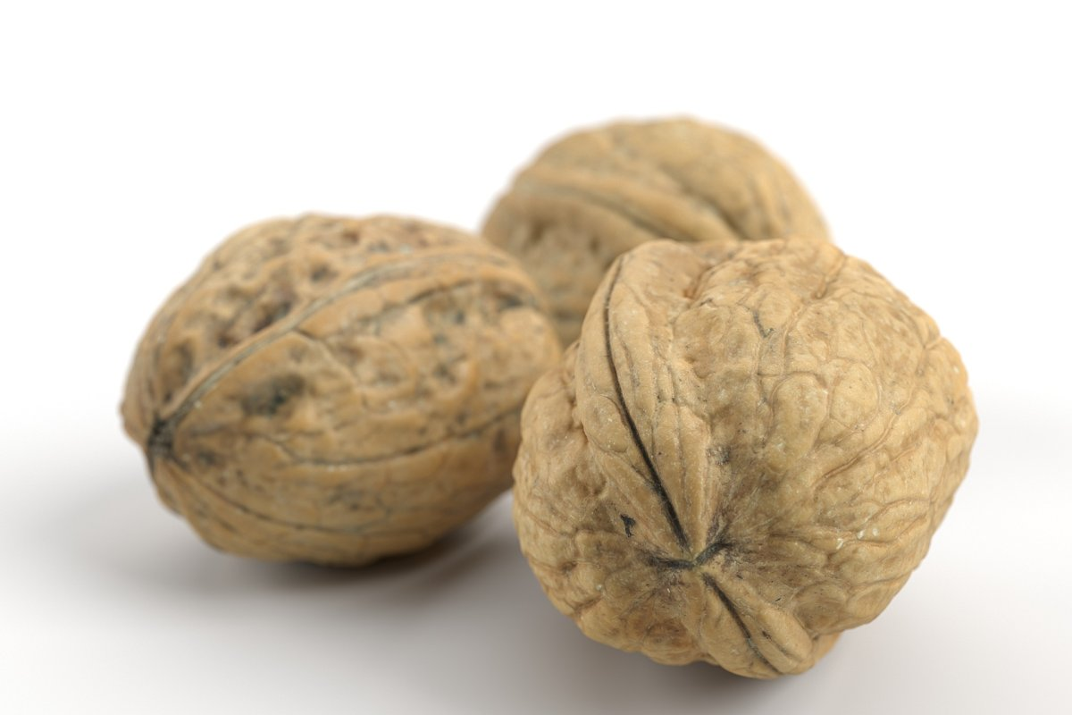 3 Different Photorealistic Walnuts