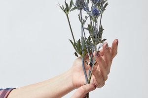 girl holding blue flowers eryngium