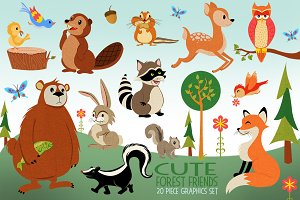 Woodland Animals Illustrated Graphic