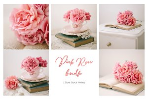 Pink Rose Bundle - Stock Photos