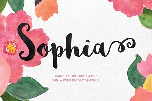 Sophia Hand-lettered