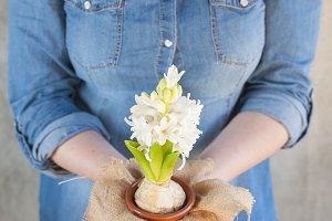 Woman holding a white hyacinth