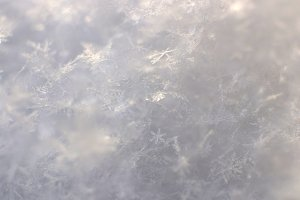 Snow Surface Background. Macro.