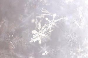 Snowflakes Ice Texture. Macro.