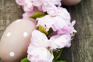 Easter eggs and sakura blossom