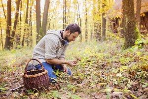 Man picking mushrooms