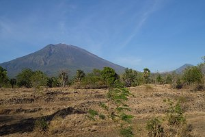 View of mountain forest landscape. Bali