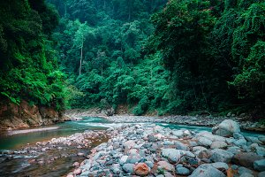 Mysterious Nature. Sumatra Indonesia