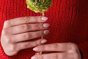 female hands holding a green flower