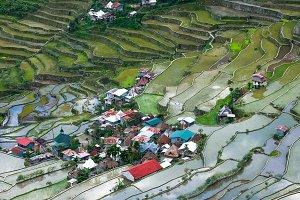 Village houses near rice terraces