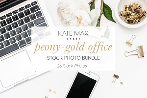 Peony + Gold Office Stock Bundle