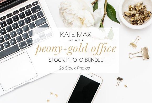 Peony + Gold Office Stock Bundle