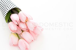 Styled Photo - Spring Pink Tulips