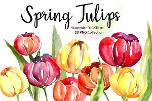 Watercolor Spring Tulips PNG Flowers