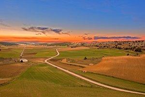 Green field on a sunset