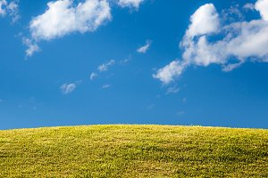Green grassy lawn or meadow with blue sky and clouds