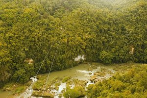 Attraction zipline in the jungle on the island of Bohol, Philippines.