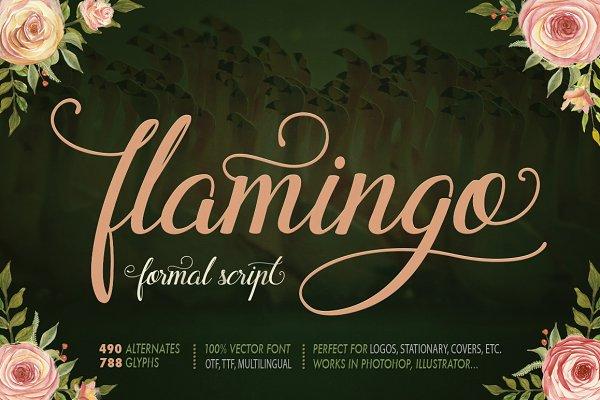 Flamingo - formal script