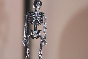 Mr. Skeleton