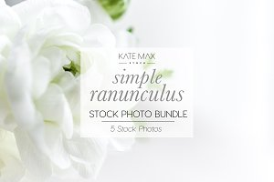 White Ranunculus Stock Photo Bundle
