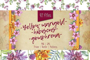 Wildflower PNG watercolor set