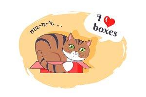 I Love Boxes Beautiful Kitty Vector Illustration