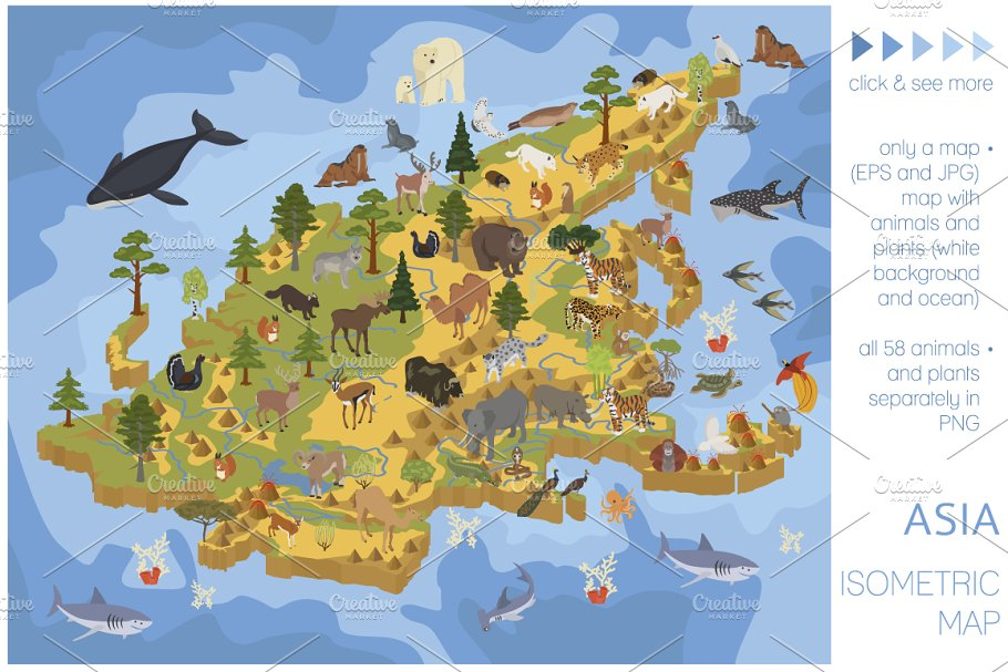 Map Of All Of Asia.Asia Isometric Flora Fauna Map Illustrations Creative Market