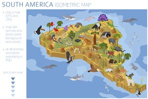 South America isometric map