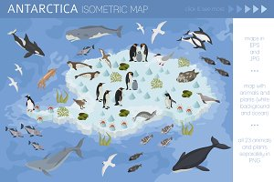 Antarctica isometric flora and fauna
