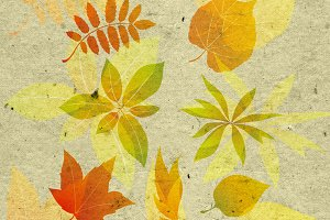 textured background with autumn leaf