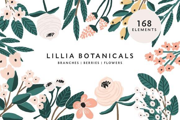 Lillia Botanicals