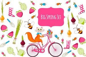 Big spring Set