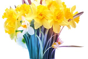 narcissus flower bouquet