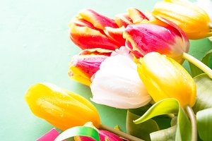 Tulip flower bouquet close up.