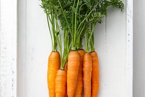 Fresh carrots bunch in tray