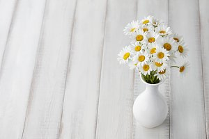 Chamomiles or daisies in white vase